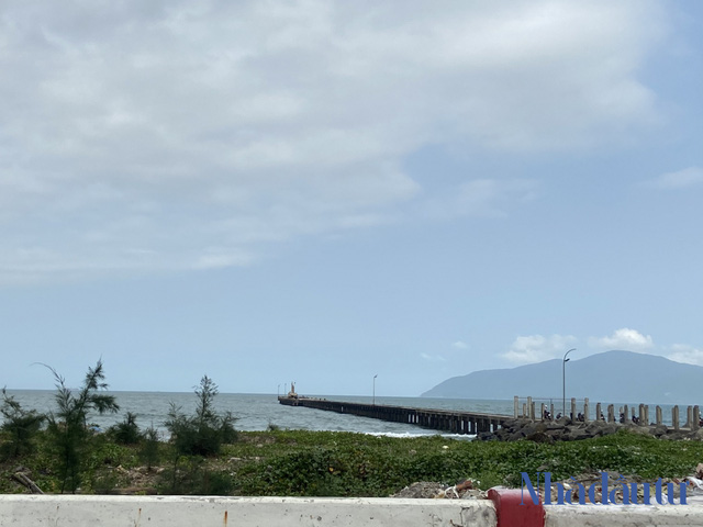 Hiện trạng nơi sẽ được xây dựng Bến cảng Liên Chiểu hơn 3.400 tỷ đồng - Ảnh 4.