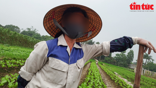 Cơn sốt đất tại Đông Anh, Hà Nội: Hỏa mù thông tin  - Ảnh 1.