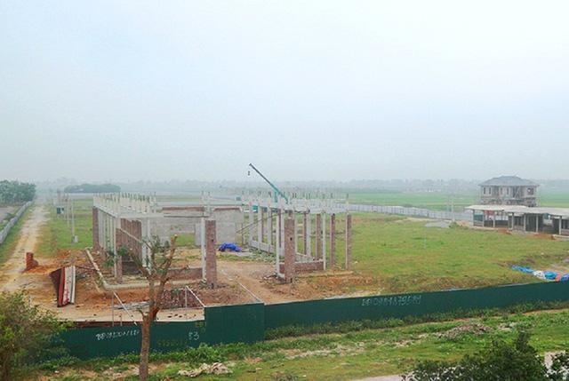 Dự án 670 tỉ đồng đắp chiếu, thành bãi chăn bò  - Ảnh 1.